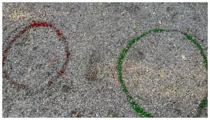 Cercles 1