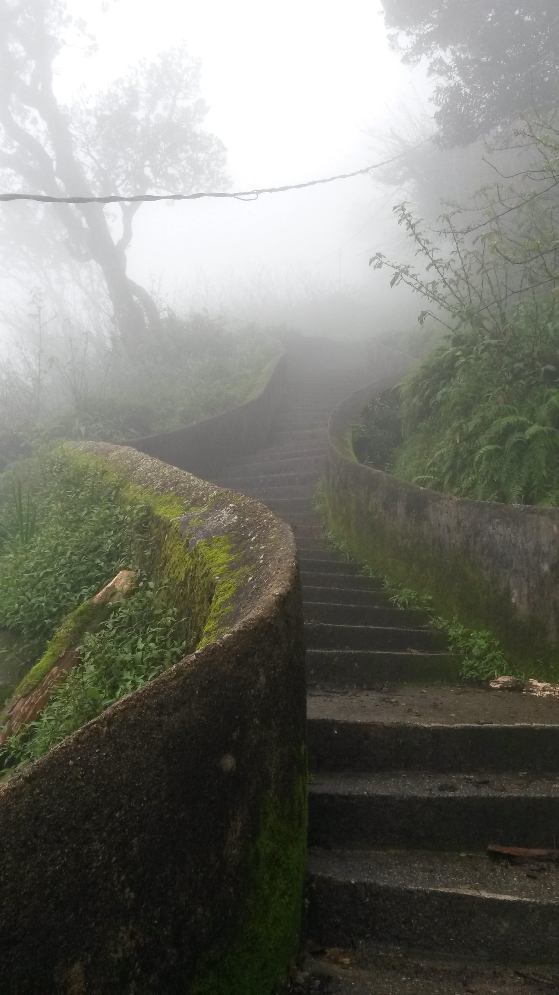 Els Camins